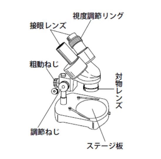 実体 顕微鏡 双眼